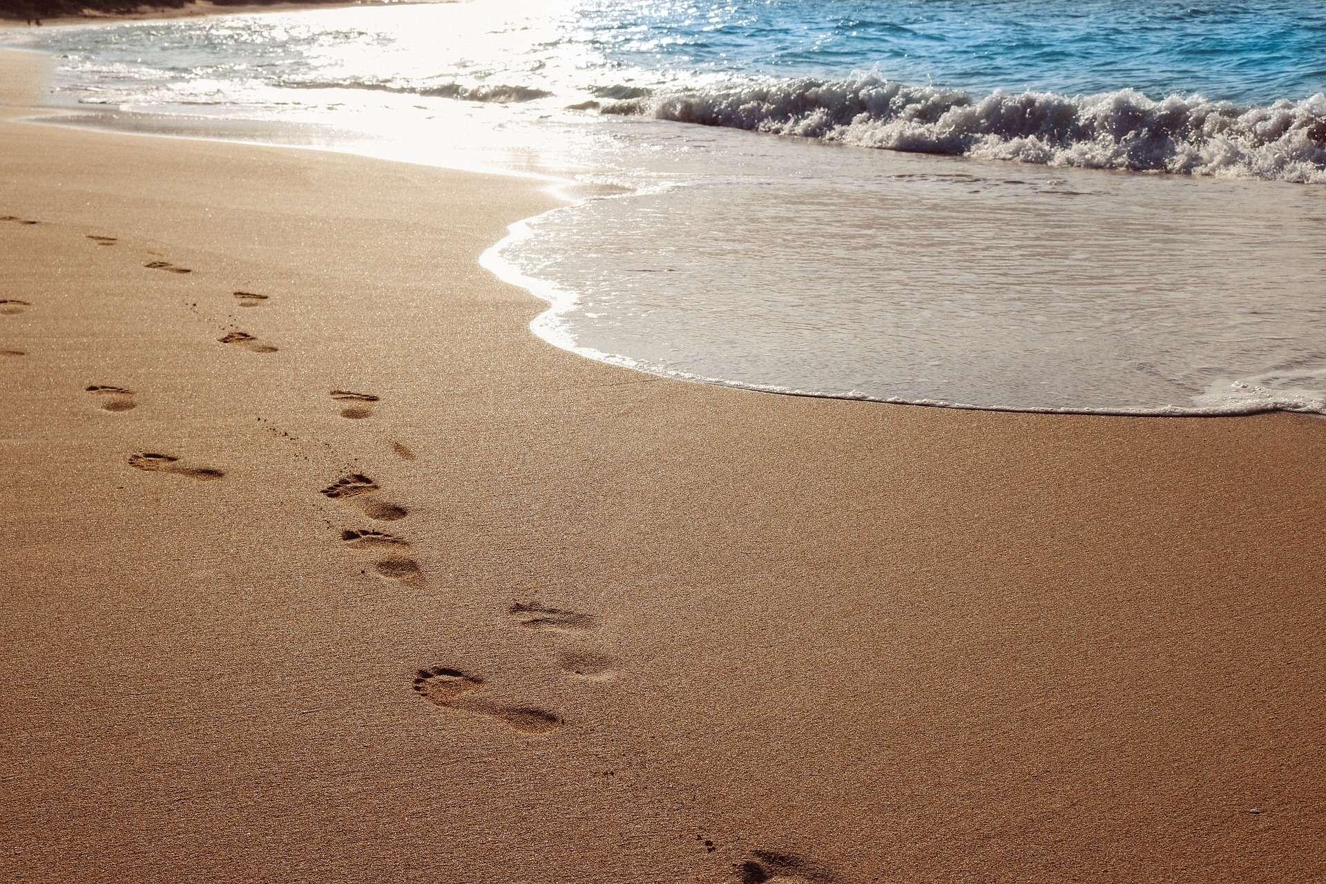 Dipendenza affettiva. Guarire l'amore : 21 passi da fare insieme | Psicologo Parma Padova Rimi